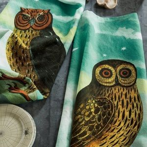 "John Derian ""What A Hoot"" Tea Towel Set"